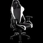 ThunderX3 TGC15 Series Gaming Chair - Black/White